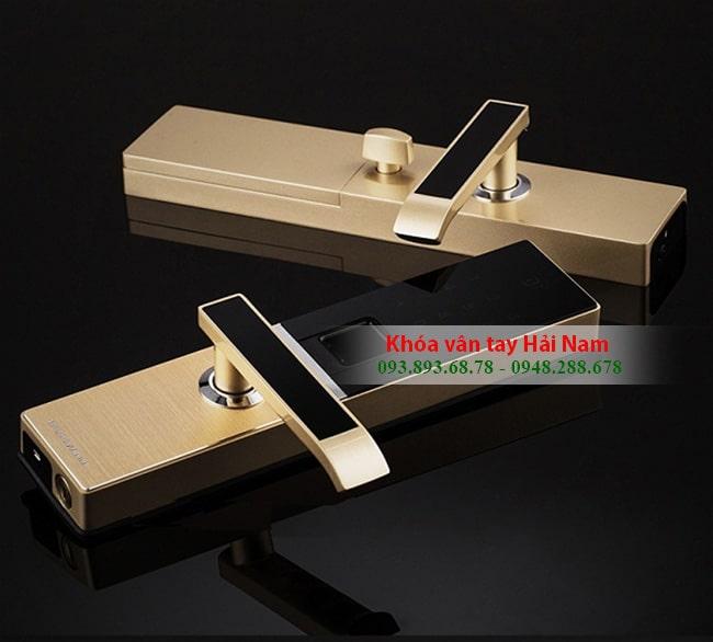 Khóa cửa vân tay Dessmann G811 cao cấp của Đức, 2 màu Gold - Silver sang trọng
